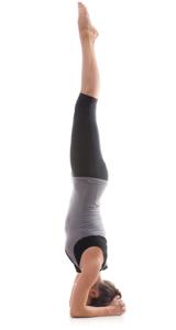 the twelve basic yoga poses  body mind light